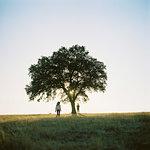 Two children (6-7, 10-11) by tree in field in Portugal