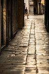 Cobblestone alley in town, Split, Dalmatian Coast, Splitsko-Dalmatinska, Croatia