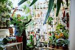 Proud owner tending to plants in nursery