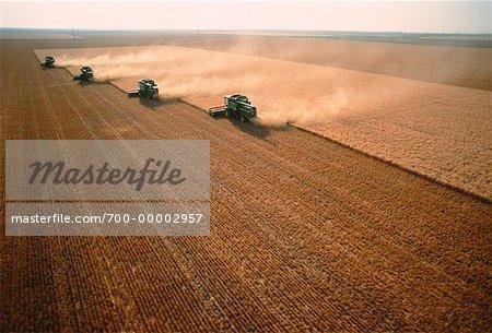 Récolte de blé Oklahoma, USA
