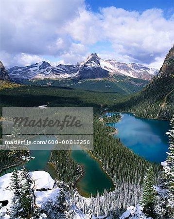 Lac o ' Hara région le Parc National Yoho en Colombie-Britannique, Canada