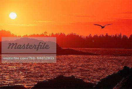 Long Beach au coucher du soleil, île Vancouver Colombie Britannique, Canada