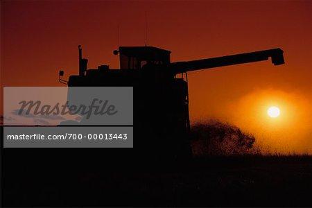 Silhouette de combinaison au coucher du soleil (Alberta), Canada