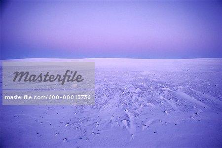 Banks Island Northwest Territories, Canada