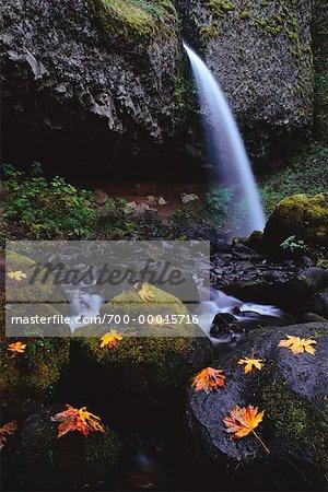 Upper Horsetail Falls in Autumn Columbia River Gorge Oregon, USA