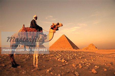Man Riding Camel by Pyramids Giza, Egypt