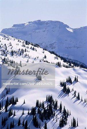 Heli ski monts Cariboo British Columbia, Canada