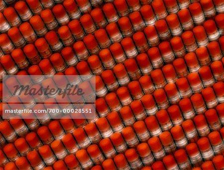 Radiergummi-Köpfe