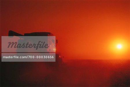 Silhouette de combinaison au coucher du soleil Rockyford, Alberta, Canada