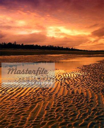 Parc Provincial Naikoon au coucher du soleil Reine-Charlotte (Colombie-Britannique), Canada