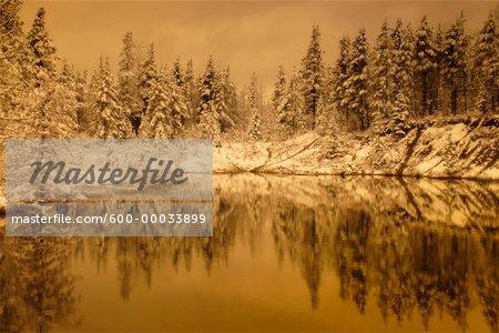 Fresh Snowfall on Trees near Lake Near Hinton, Alberta, Canada