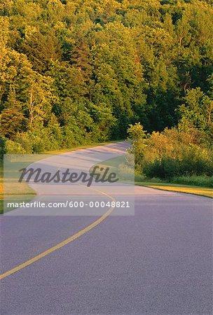 Route et arbres, Gatineau Parkway, parc de la Gatineau, Québec, Canada