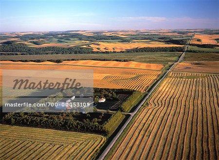 Vue aérienne des terres agricoles en automne Holland, Manitoba, Canada