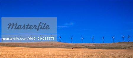 Row of Wind Turbines on Hill, Cowley Ridge, Alberta, Canada