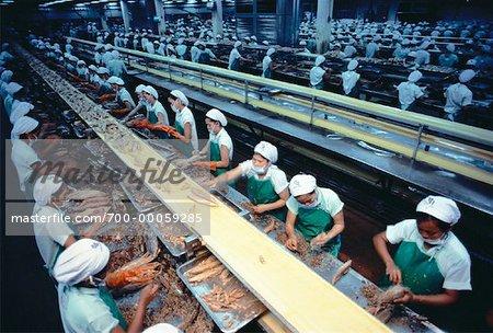 Travailleurs de la transformation du poisson planter à Bangkok, Thaïlande