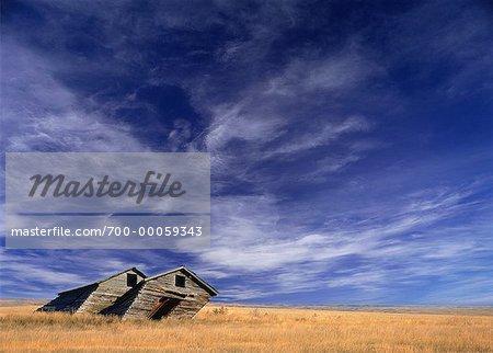 Cabane abandonnée en champ proche Parc National des Prairies, Saskatchewan, Canada