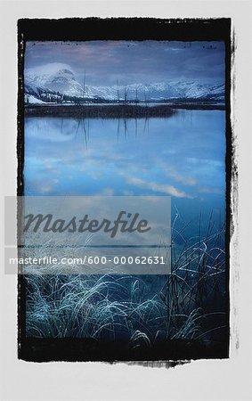 Fresh Snowfall on Landscape near Talbot Lake, Jasper National Park, Alberta, Canada