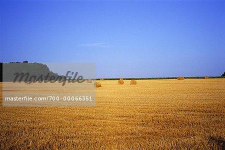 Bottes de foin dans le champ région-Deux Sevres, France