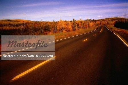 Road and Trees in Autumn, Yukon Territory, Canada