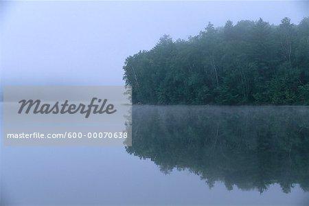 Lake and Trees with Fog, Otter Lake, Haliburton, Ontario, Canada
