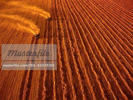 Aerial View de blé récolte Portage-la-Prairie, Manitoba Canada