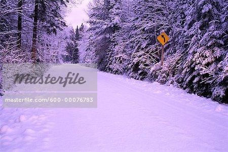 Road through Trees in Winter, Algonquin Provincial Park, Ontario, Canada