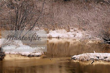 Fresh Snow, Trees and Stream, Algonquin Provincial Park, Ontario, Canada