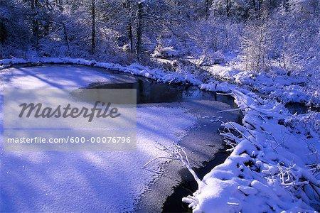 Beaver Dam and Pond in Winter, Algonquin Provincial Park, Ontario, Canada