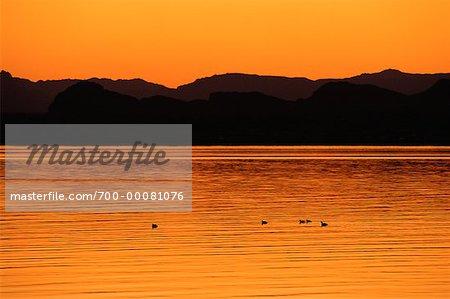 Lake Mead au crépuscule Southern Nevada, USA