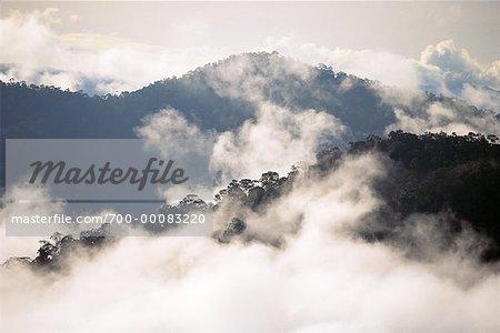 Mountains, Jungle and Clouds Bukit Belalong, Brunei Darussalam