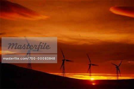 Silhouette d'éoliennes au coucher du soleil Pincher Creek, Alberta, Canada