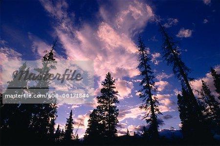 Coucher du soleil, le Parc National Banff, Alberta, Canada