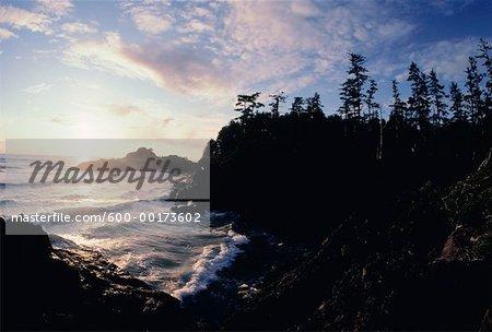 Long Beach, île de Vancouver, en Colombie-Britannique, Canada