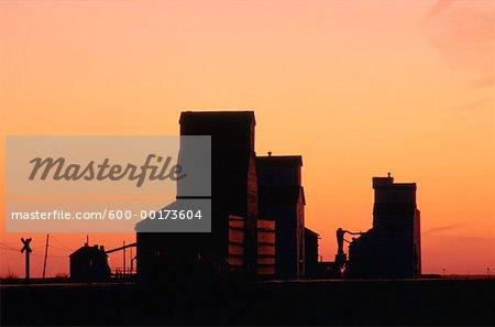Silos à grains, Saskatchewan, Canada