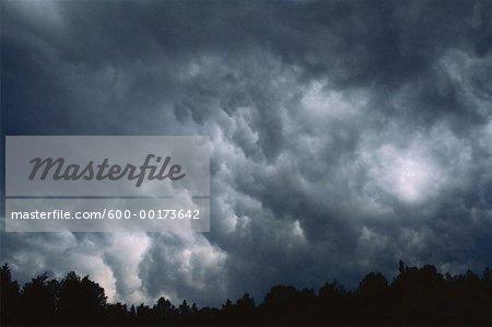 Nuages d'orage et d'arbres, Bluff, Nouveau-Brunswick, Canada de personne