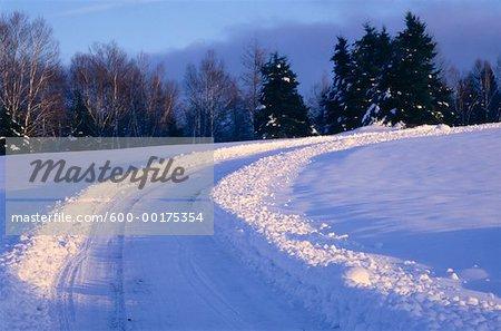 Route de campagne en hiver, Shampers Bluff, Nouveau-Brunswick, Canada