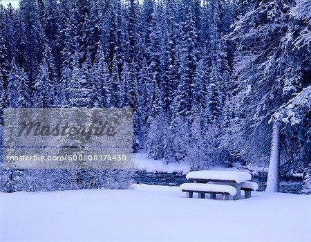 Table de pique-nique en hiver, le Parc National Jasper, Alberta, Canada