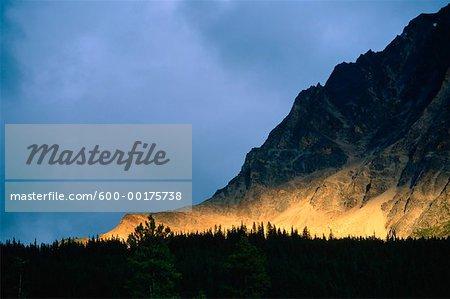 Highway 93, Icefields Parkway, Jasper National Park, Alberta, Canada