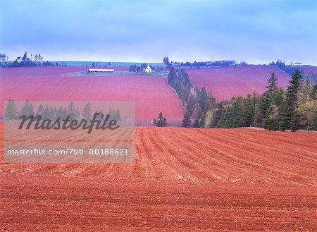 Agriculteur champs agréable vallée Prince Edward Island Canada
