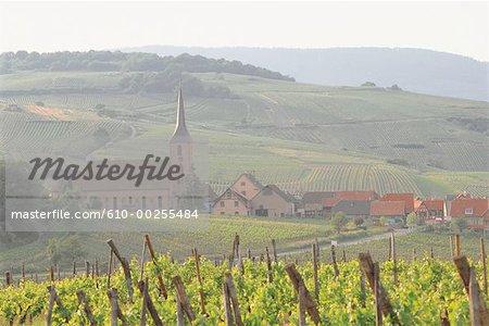 Route du vin de France, Alsace, Bleinschwiller,