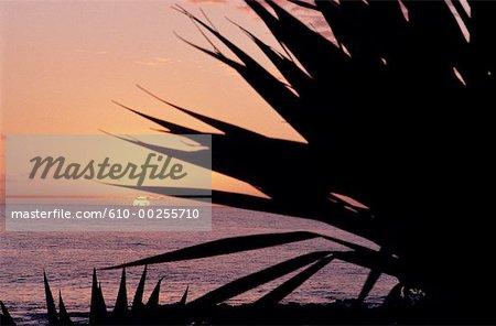 Réunion, coucher de soleil