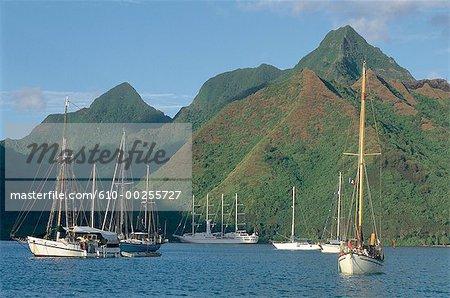 Polynésie française, l'île de Moorea, « Windsong » voiliers dans la baie d'Opunohu