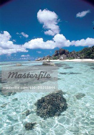 Seychelles, the sea