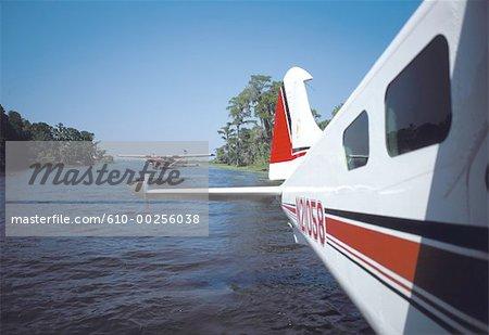 Aux États-Unis, en Louisiane, des hydravions dans le bayou