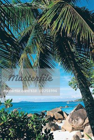 Seychelles, Praslin Island, beach and granite rocks