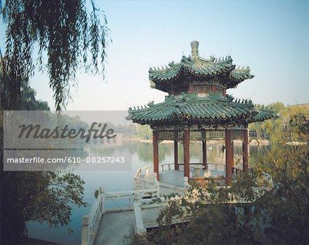 Jardin de Chine, Beijing, saule