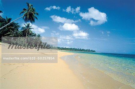 Dominican Republic, Las Terranas, the shoreline