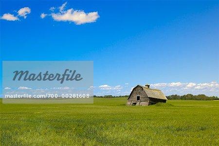 Couler la grange dans le champ