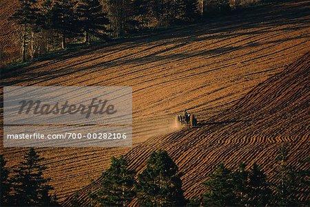 Agriculteur labourant champ