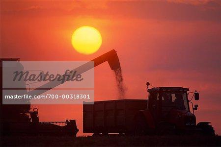 Silhouettes de machinerie agricole